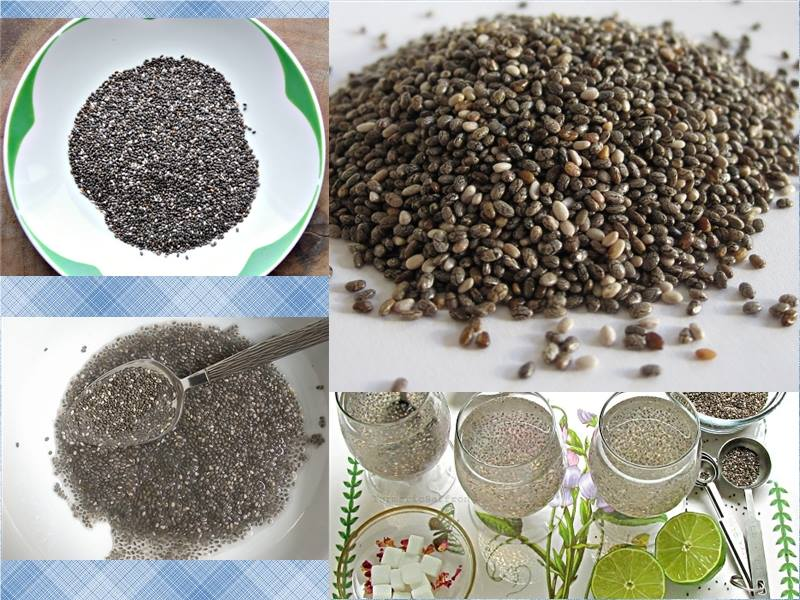 Cach su dung hat chia seed